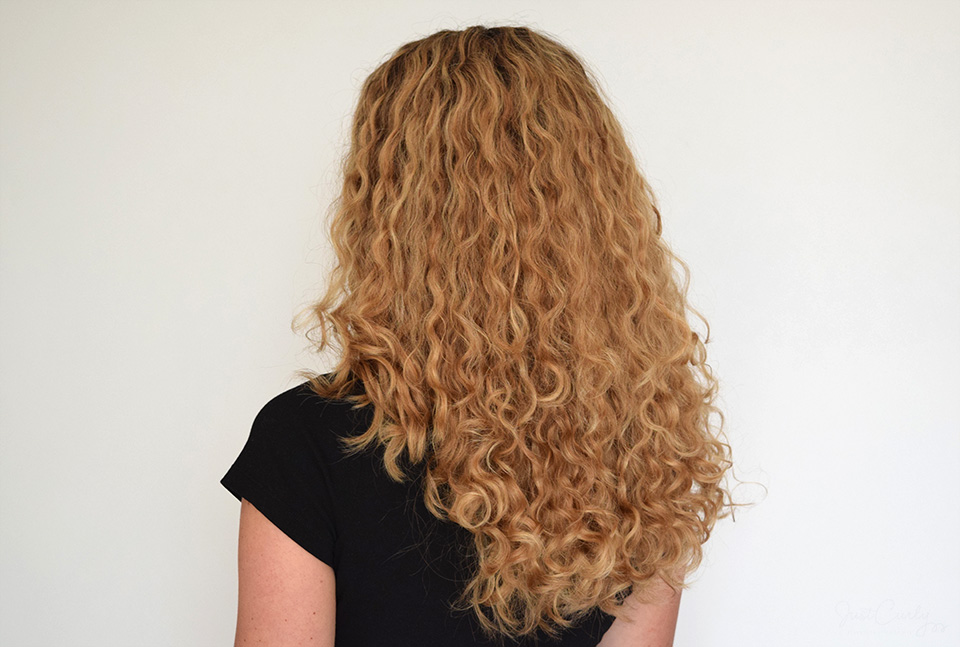 Curly Hair Solutions Curl Keeper Original Review